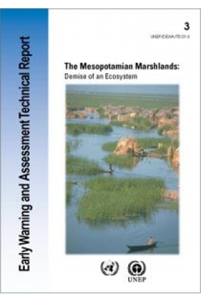 The Mesopotamian Marshlands: Demise of an Ecosystem