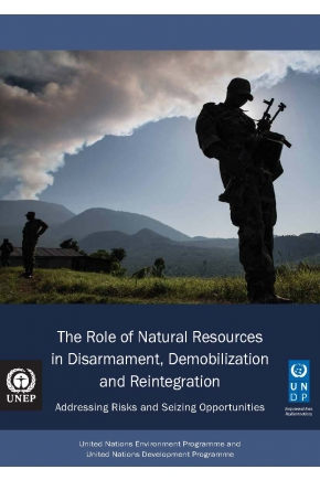 The Role of Natural Resources in Disarmament, Demobilization and Reintegration - Addressing Risks and Seizing Opportunities
