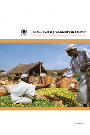 Local-Level Agreements in Darfur