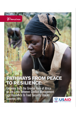 Pathways from Peace to Resilience: Evidence from the Greater Horn of Africa on the Links between Conflict Management and Resilience to Food Security Shocks