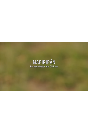 Mapiripán: Between Water and Oil Palm [Video]