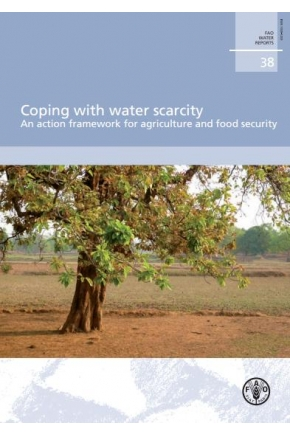 Coping with Water Scarcity: An Action Framework for Agriculture and Food Security