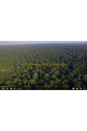 Forest Heroes of Cambodia [Video]