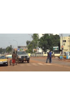 Drivers of War, Foundations of Peace: A Field Report from the Central African Republic [Video]
