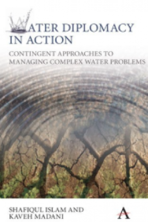 Mediation in the Israeli-Palestinian Water Conflict: A Practicioner's View