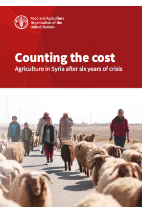 Counting the Cost: Agriculture in Syria after Six Years of Crisis