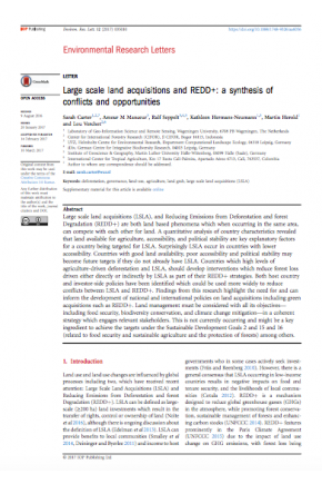 Large Scale Land Acquisitions and REDD+: A Synthesis of Conflicts and Opportunities