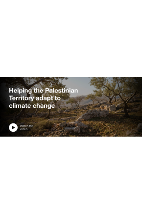 Helping the Palestinian Territory Adapt to Climate Change