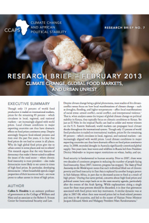 Global Food Prices, Regime Type, and Urban Unrest in the Developing World