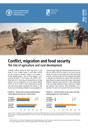 Conflict, Migration, and Food Security: The Role of Agriculture and Rural Development
