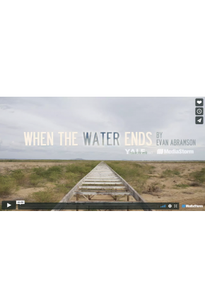 When the Water Ends [Video]